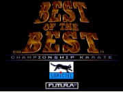 Best of the Best Championship Karate on Msdos