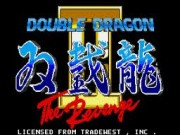 Double Dragon II: The Revenge on Msdos Game