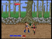 Golden Axe on Msdos Game