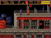 Ninja Gaiden II: The Dark Sword of Chaos on Msdos