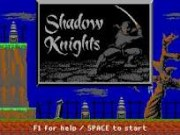 Shadow Knights game