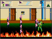 Teenage Mutant Ninja Turtles II: The Arcade Game on Msdos Game