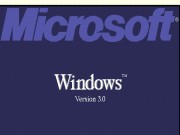 Windows 3.0 English