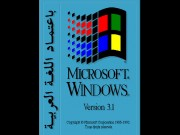 Windows 3.1 French Game