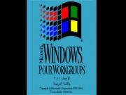 Windows Pour Workgroups 3.11 French Game