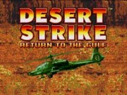 Desert Strike - Return to the Gulf on Msdos Game
