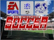 FIFA International Soccer on Msdos Game